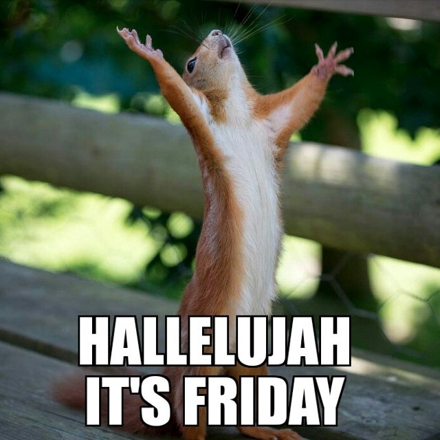 Praise the lawwd, it's Friday! #tgif