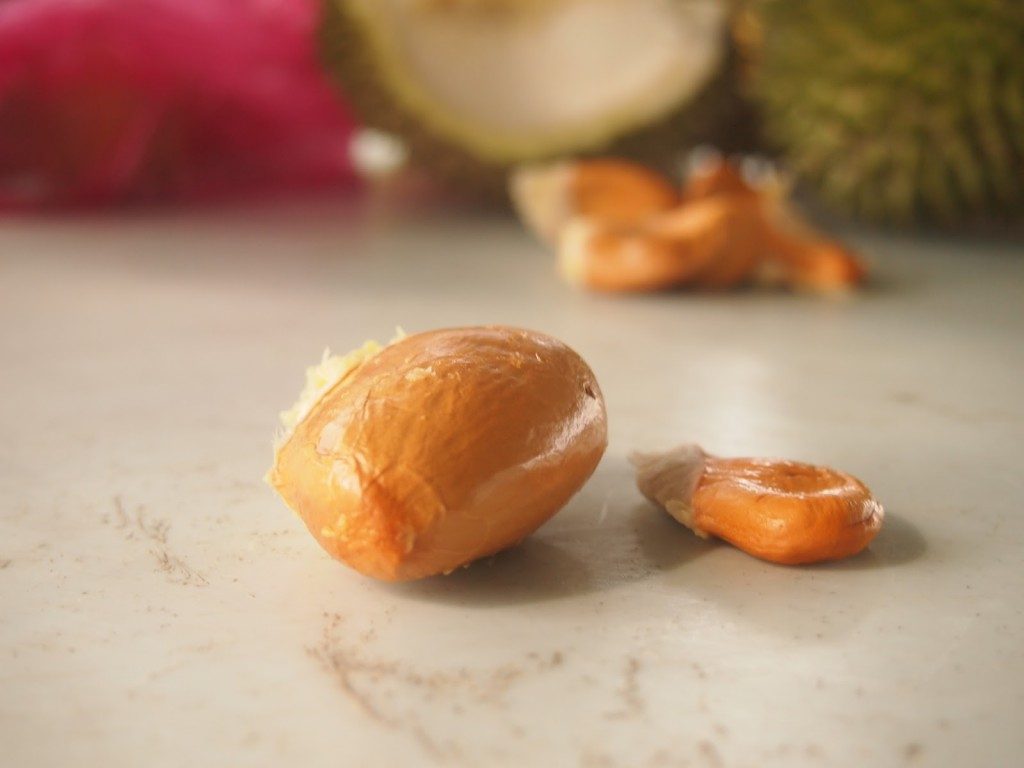 Durian Seed