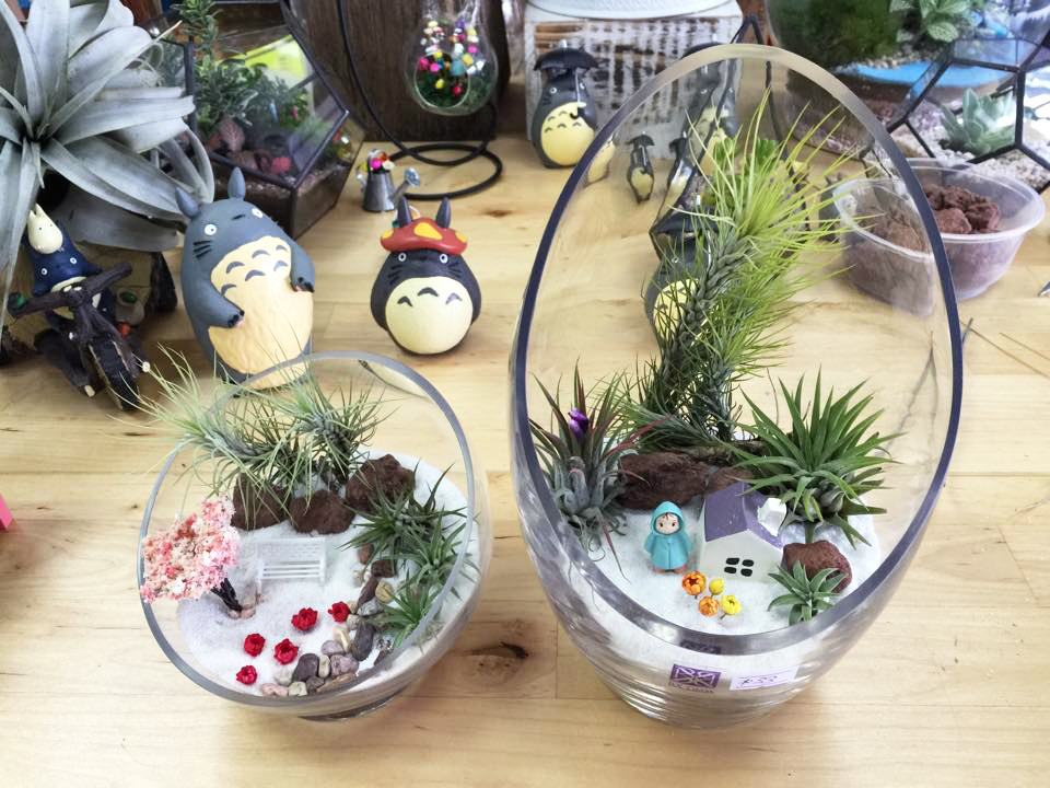 Love In A Bottle Terrarium