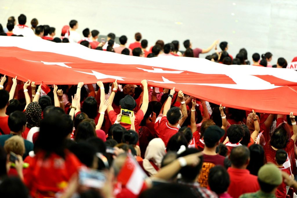NDP 2016 National Flag