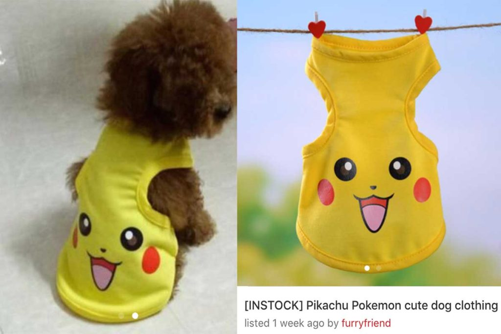 Pikachu-Dog-Outfit